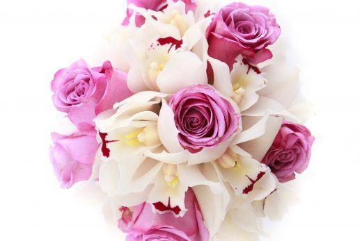 Fotograf de produs Iasi – flori Floralux